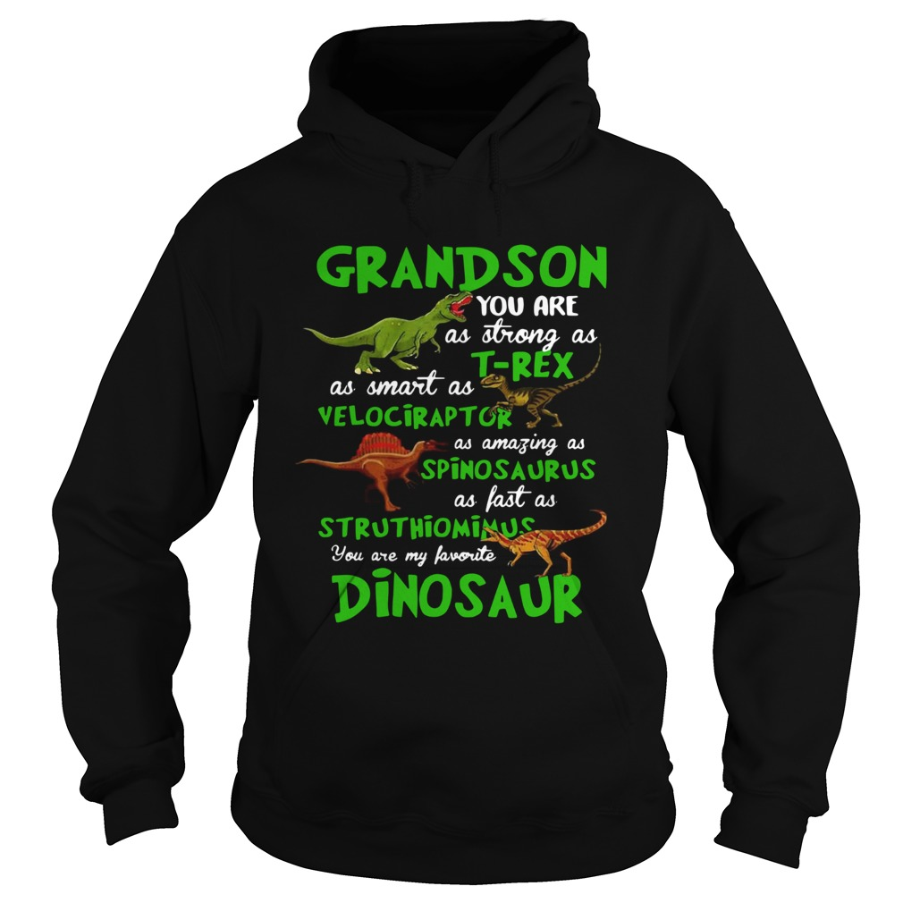 Grandson You Are As Strong As Trex As Smart As Velociraptor As Amazing As Spinosaurus Dinosaur shi Hoodie